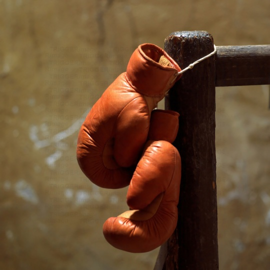 Pair of boxing gloves hanging.