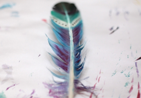 painted-feathers